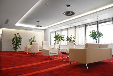commercial carpet cleaning in dorset