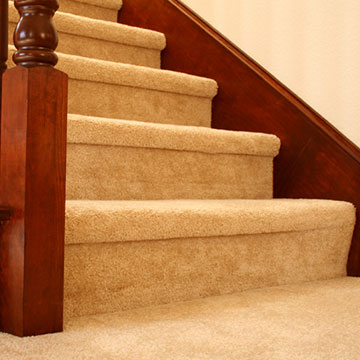 carpet cleaning services in dorset